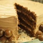 Skuren chokladtårta