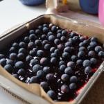 Fyllning i blåbärskaka
